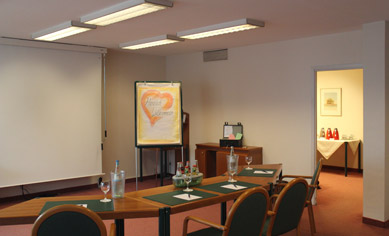 Conference room - individual designing